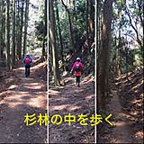 Simg_3044_2